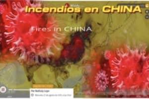 coronavirus 2020 CHINA-300