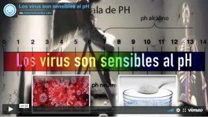 virus pH Y 1